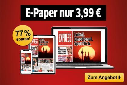 E-Paper FLEX